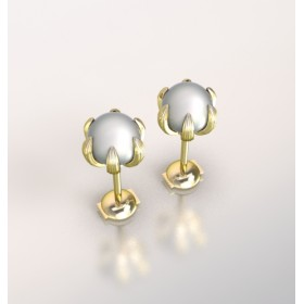 Hoop Earrings - 14kt In Stock